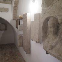 Koper - Pokrajinski muzej (2)